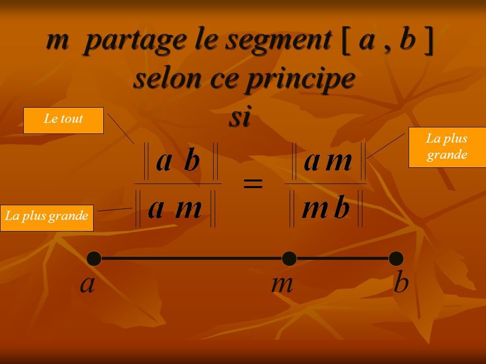 m partage le segment [ a , b ] selon ce principe si